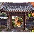 Late Autumn in Kamakura