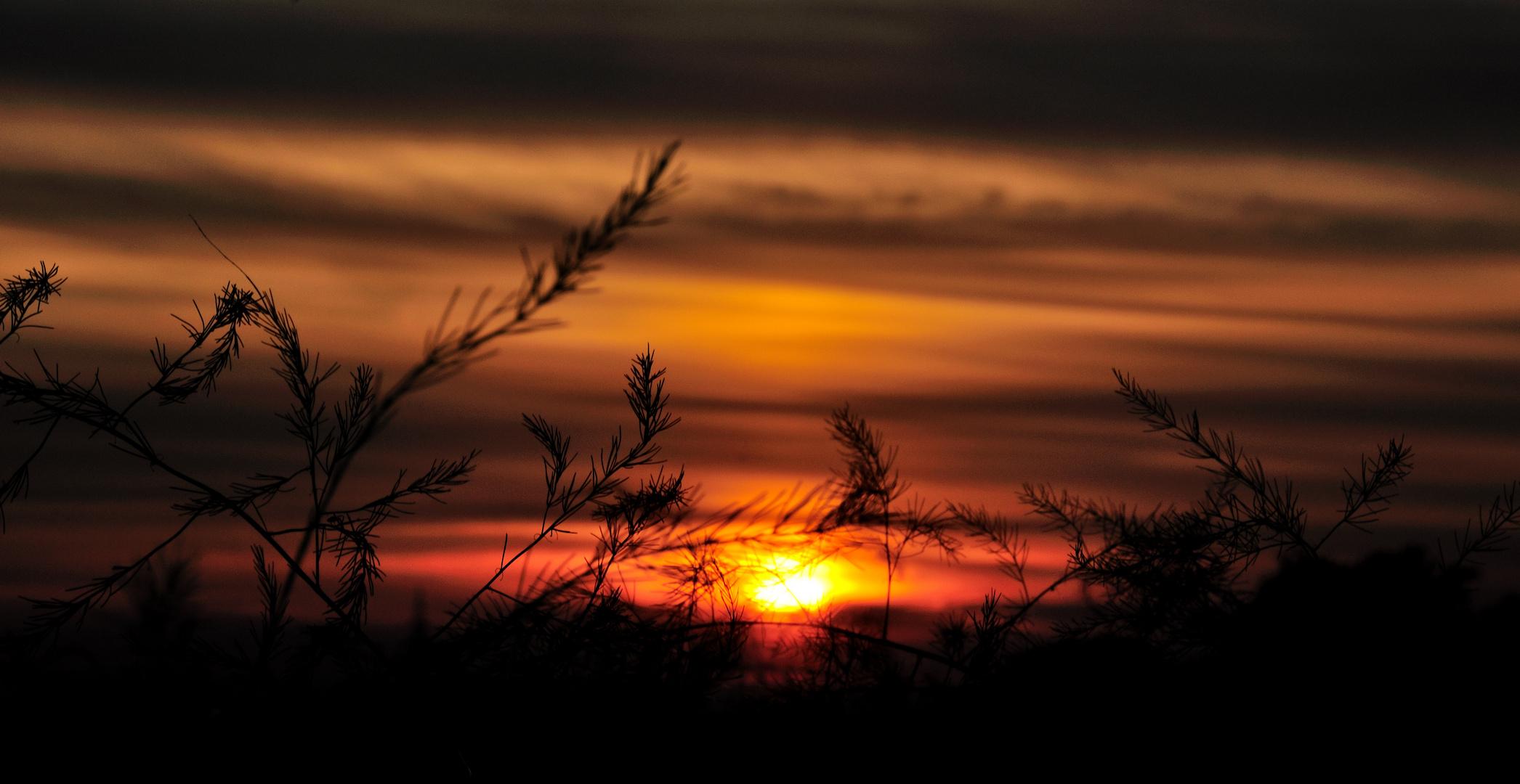 late summer sundown