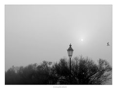Laterne, Sonne, Nebel