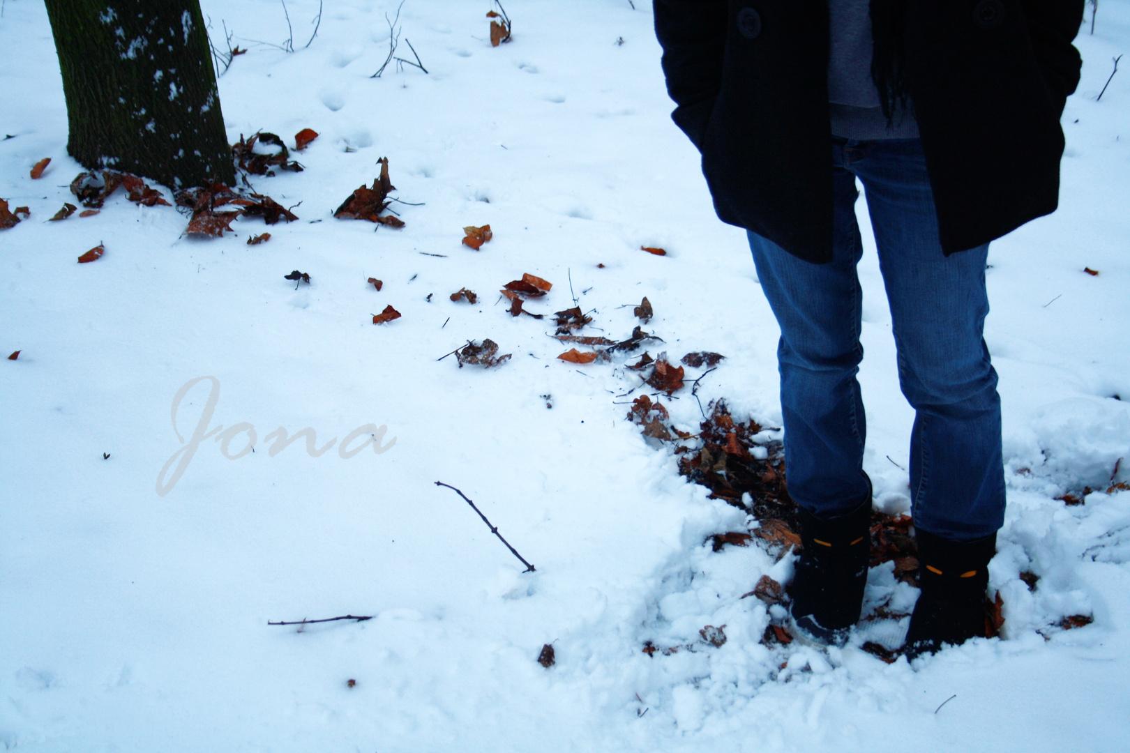 L'attente neigeuse