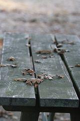 Laub auf dem Tisch - es ist Herbst