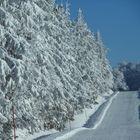 l'Aubrac sous la neige (route de Laguiole à Aubrac)