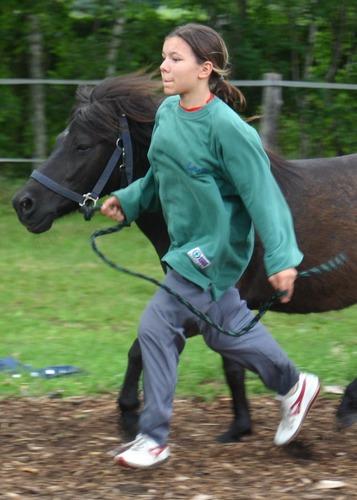 Lauf mein Pony