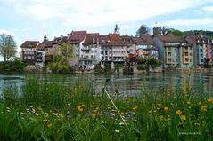 Laufenburg (2) - Drei Ansichten einer Stadt
