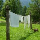 Laundry day ...