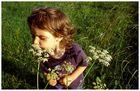 Laura sagt, diese Blume riecht komisch