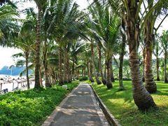 lauschiger Weg - Ria Bintan