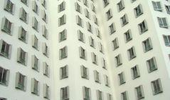 Lauter Fenster