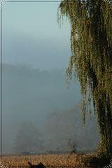 L'automne 3