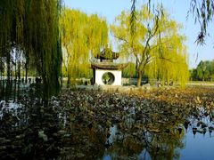L'automne a Beijing