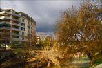 L'automne au bord de ma rivière