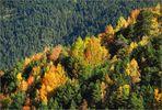 L'automne en Andorre *