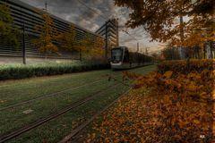 l'automne en ville (2) !!!