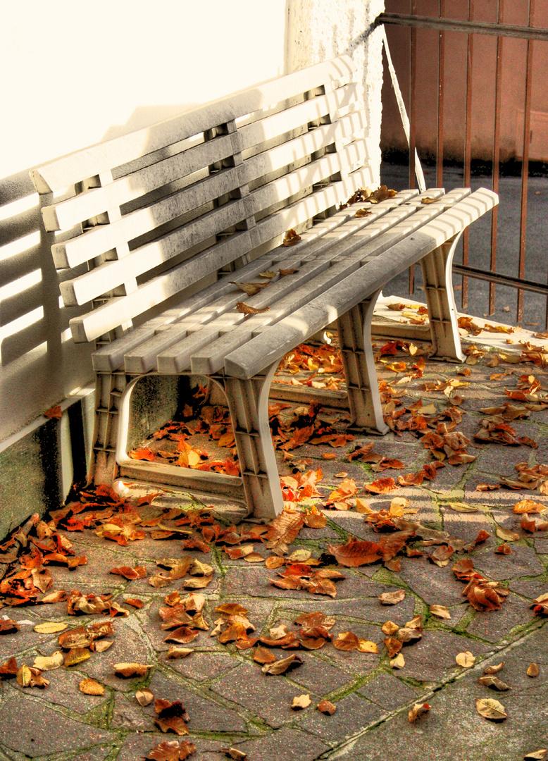 l'autunno ai nostri piedi...