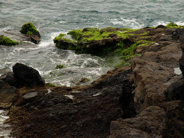Lava und Meer