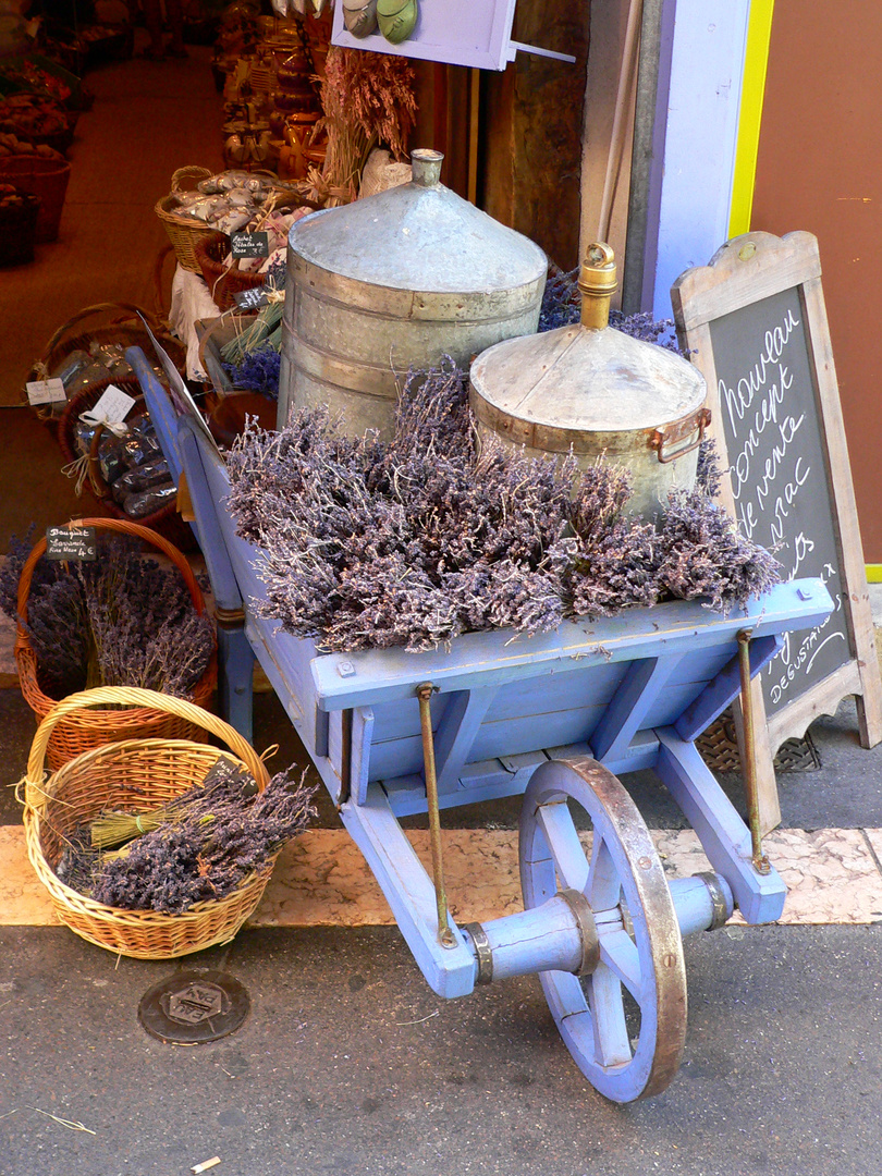 Lavendel - postkartenreif