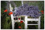 Lavendel trifft Mohn