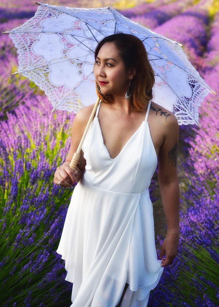 Lavendelfeld #2