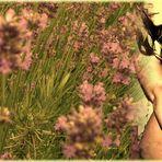 Lavendelkind (2)