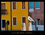 Le ali della libertà....a Murano...