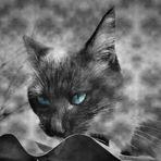 Le bleu de ses yeux