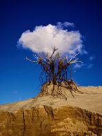 Le capteur de nuage