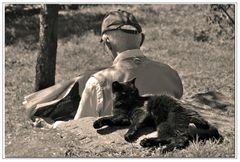 le chat , animal de compagnie....