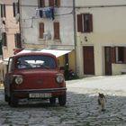 Le chat croate et la voiture