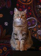 le chat fait tapisserie