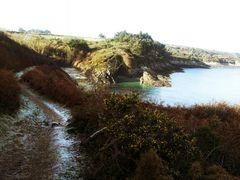 Le chemin (24) .....cela mène à une petite plage!