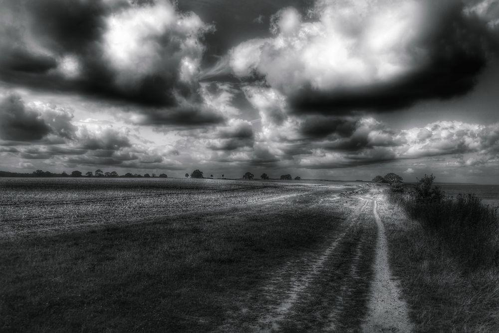 Le chemin (3)