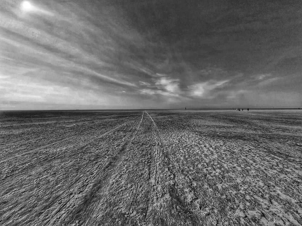 Le chemin (4)