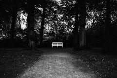Le chemin (6)