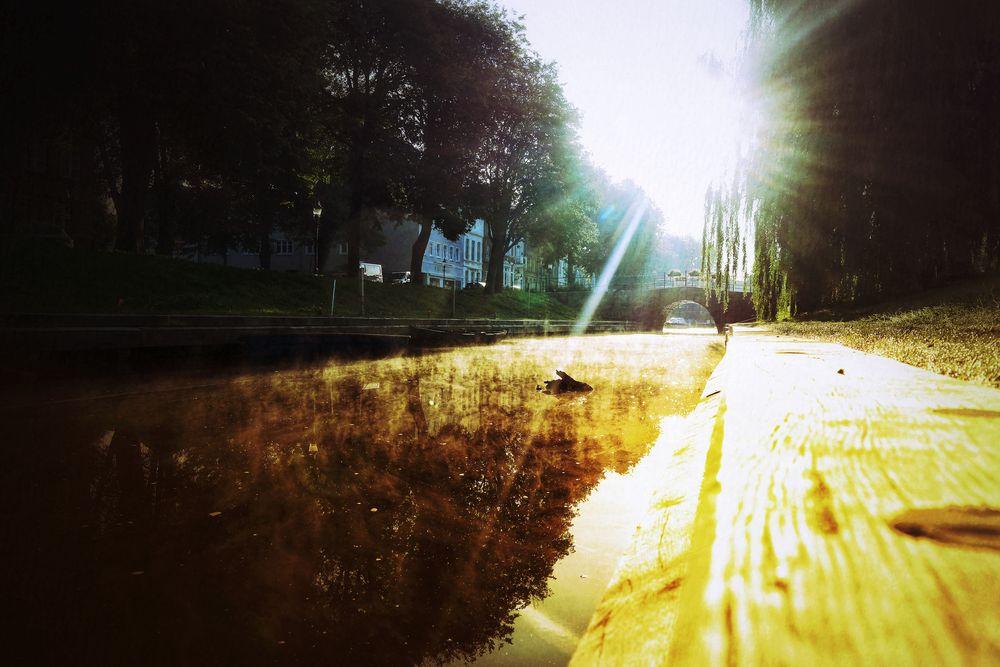 Le chemin (8)