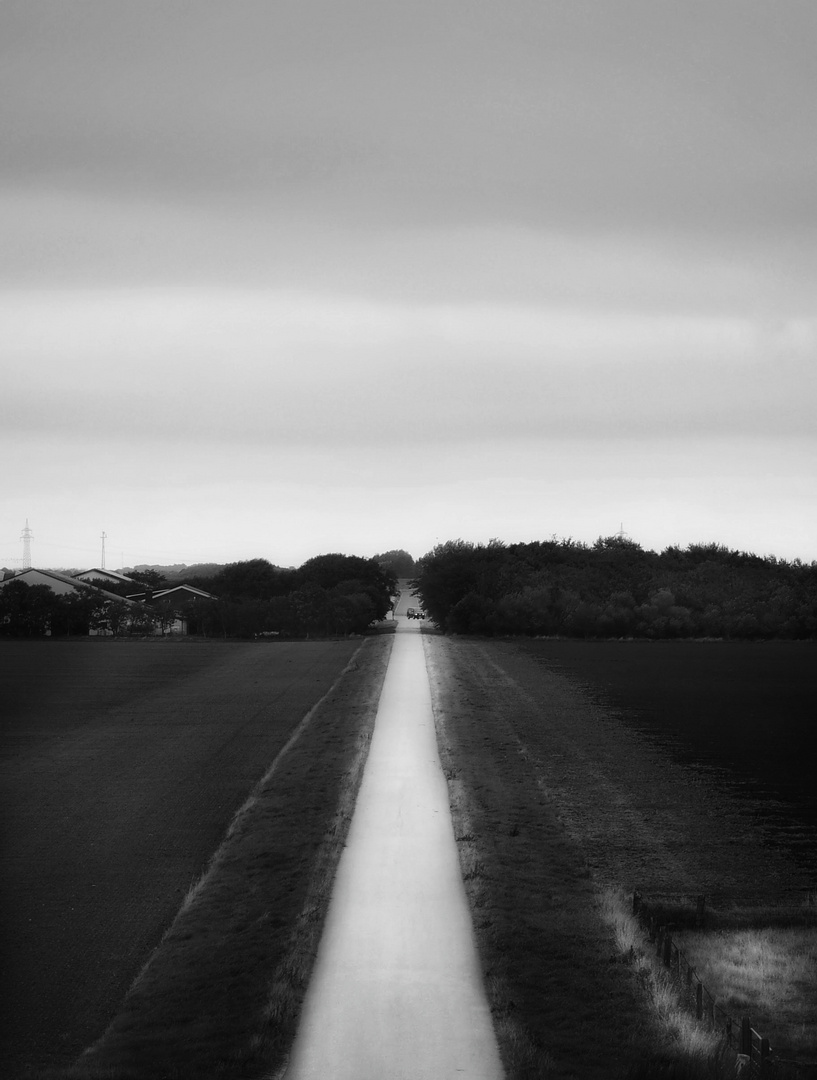 Le chemin (9)