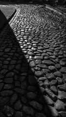 Le chemin pierreux