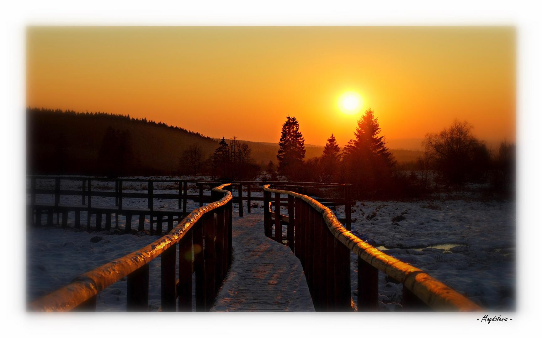 Le chemin vers le Soleil