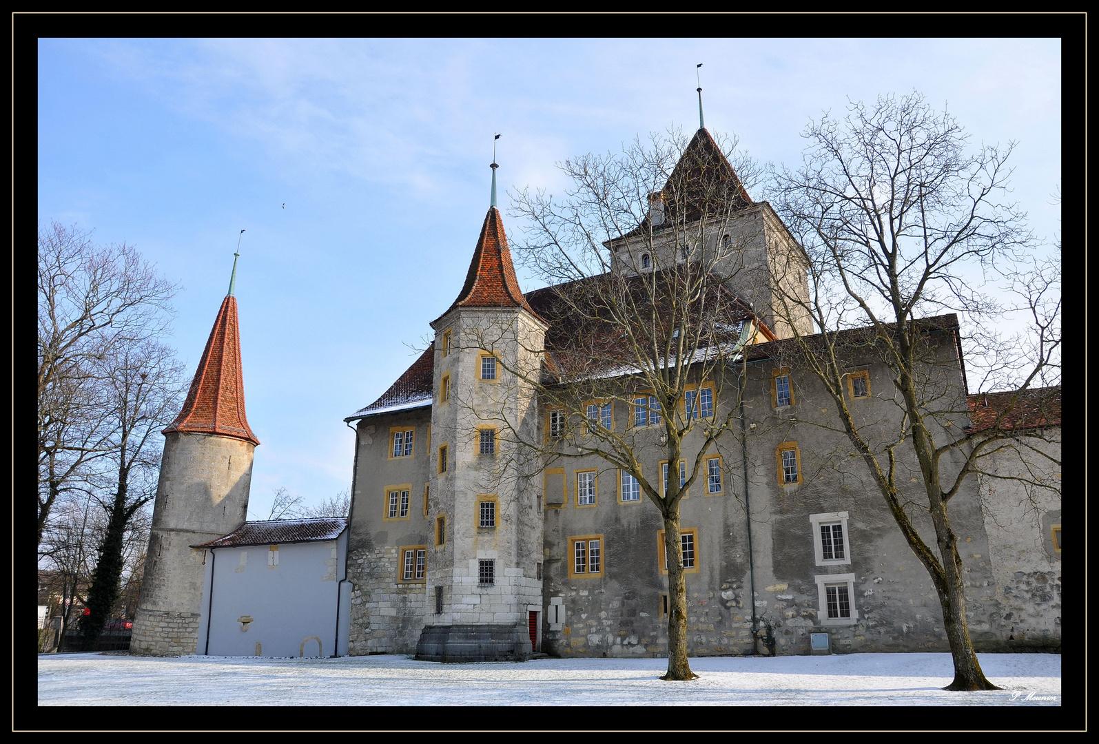 Le château de Nidau