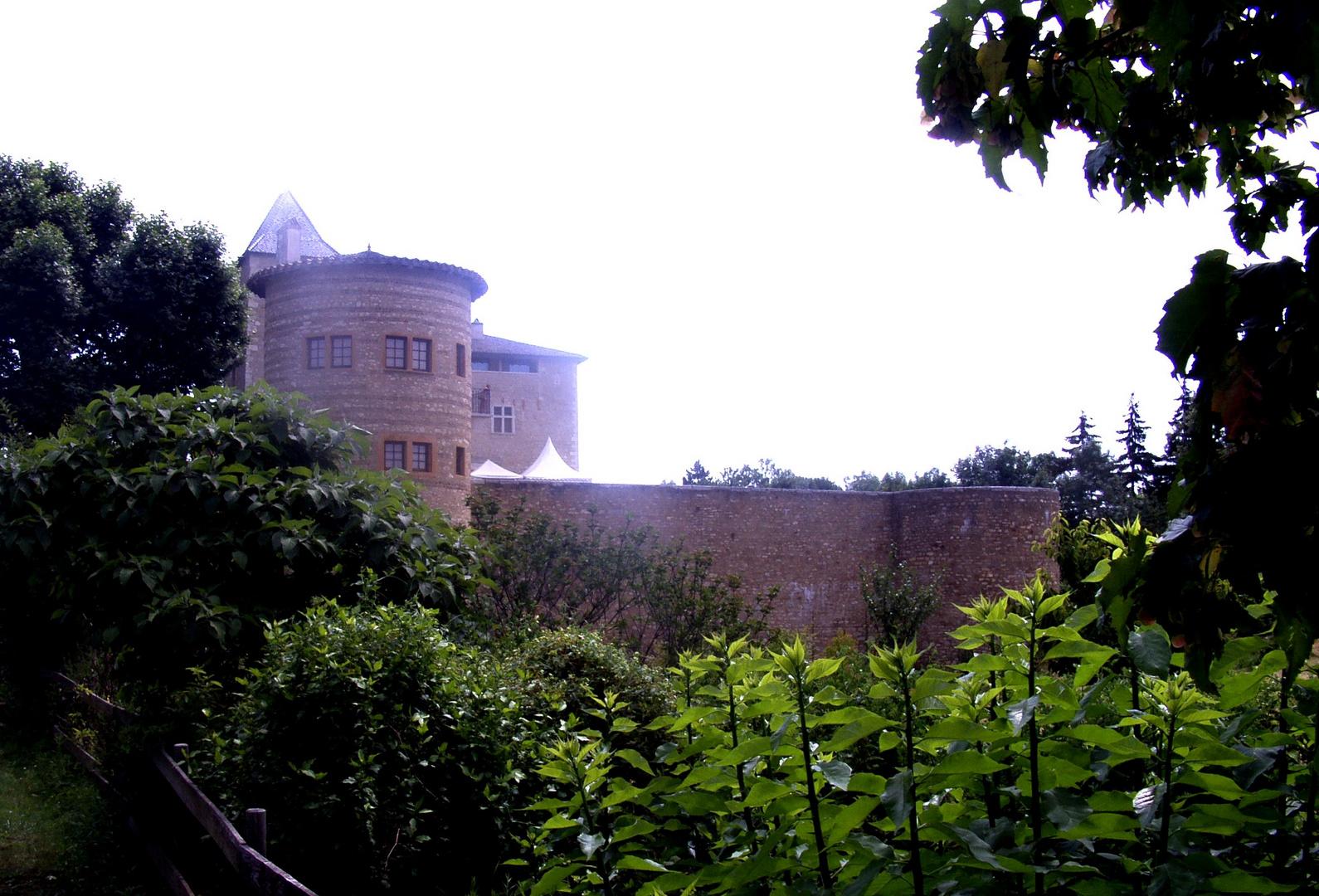 Le Château de Saint Bernard (1)