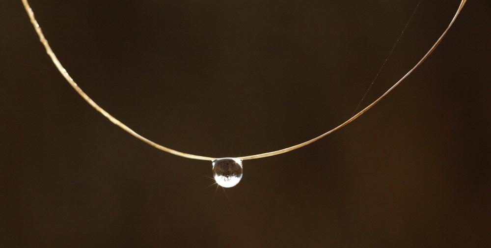 le collier et sa perle !!!