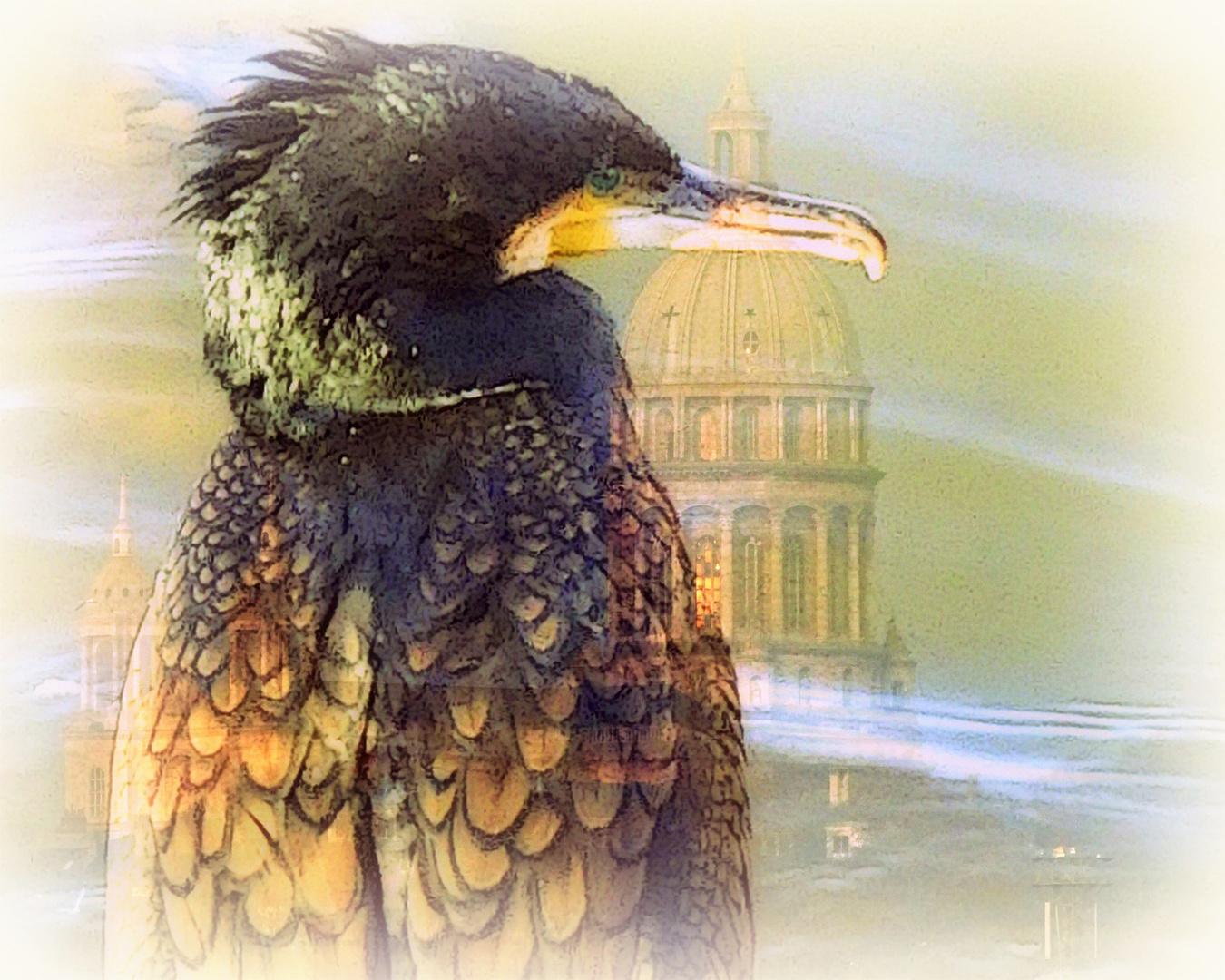 Le cormoran et sa cathédrale