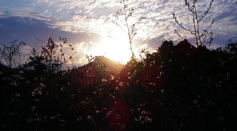 Le coucher du soleil en Crimee