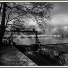 Le Danube 2