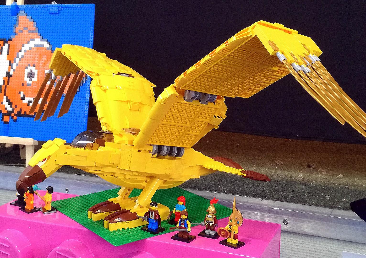 Le Grand Condor ...