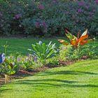 Le jardin Jayan fait peau neuve en fin de printemps