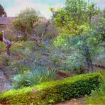 Le jardinier du printemps