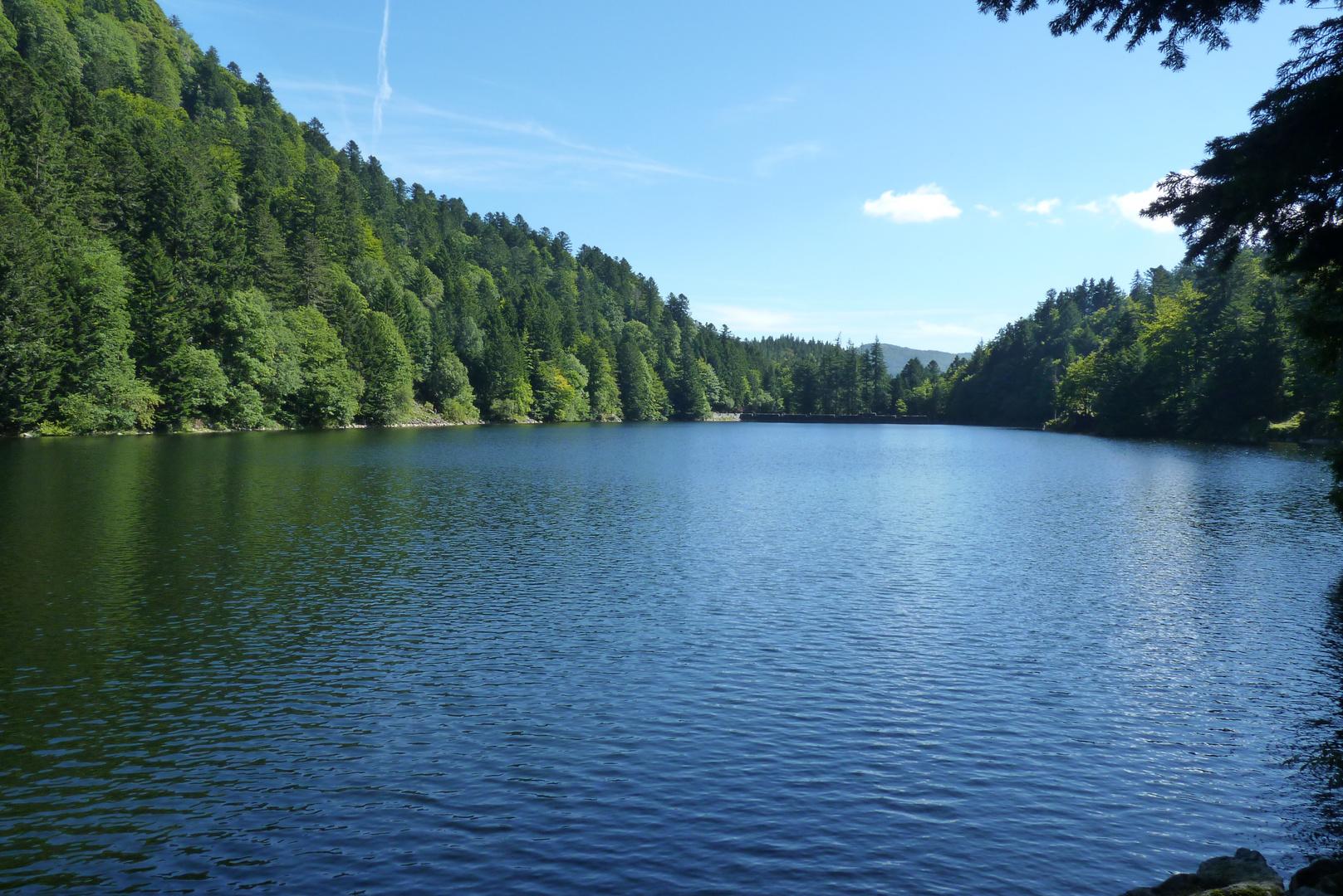 Le lac d'Altenweiher
