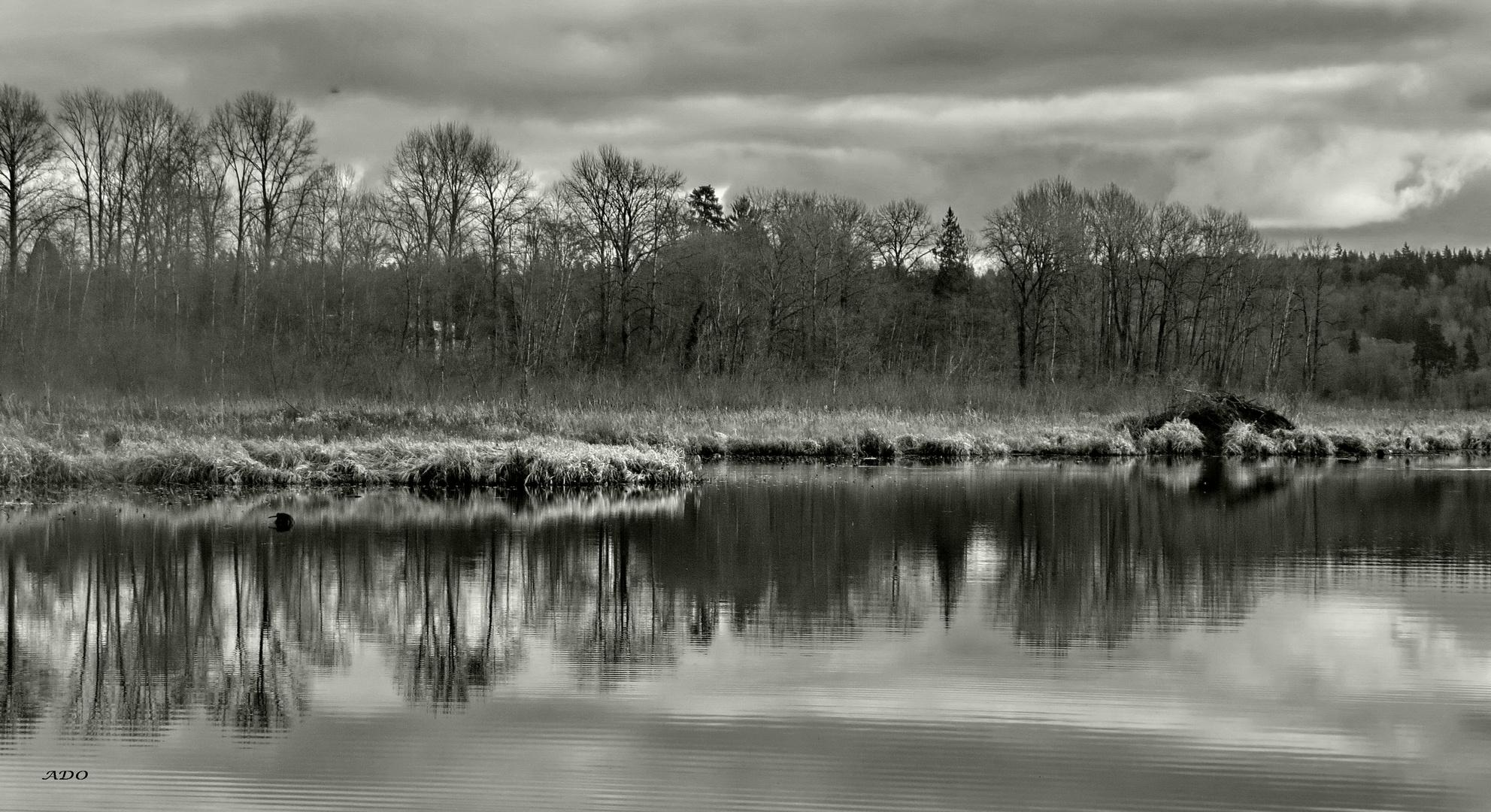 le lac en décembre