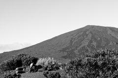 le lecteur du volcan