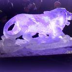 Le lion de glace .....